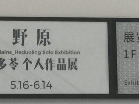野原-何多苓個人作品展-【1F-1第五部】-四川美術館-四川成都