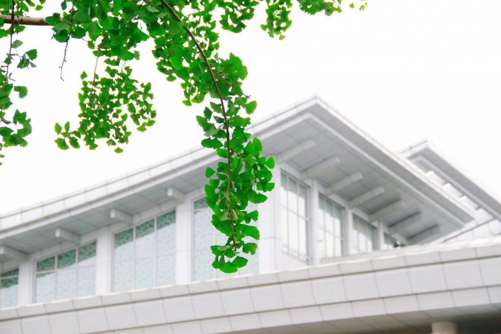 四川博物院の初夏-浣花溪-四川成都-撮影:張衡