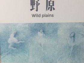 野原-何多苓個人作品展-【1F-2第一部】-四川美術館-四川成都