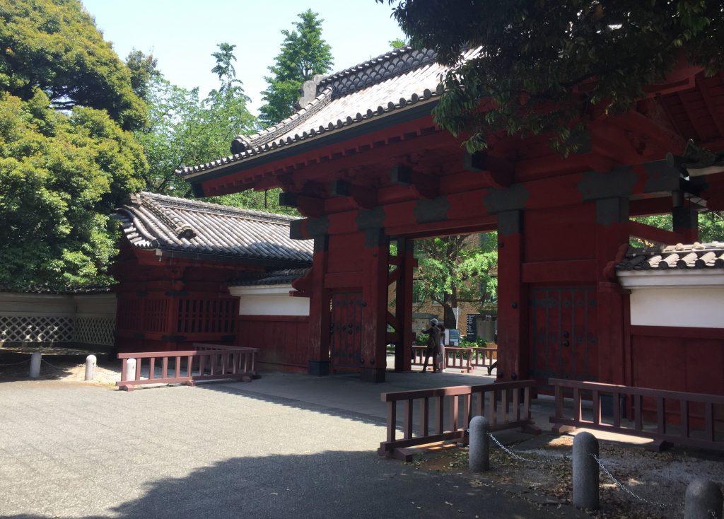 東京大学-本郷キャンパス-東京