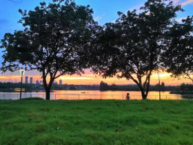 北湖生態公園-成華区-成都市-撮影:包雅琴