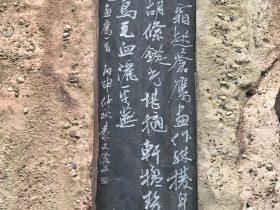 畫鷹-杜甫千詩碑-浣花溪公園-成都杜甫草堂博物館-書:叢文俊