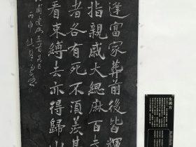 遣興五首 其五-杜甫千詩碑-浣花溪公園-成都杜甫草堂博物館-書:朱勇方