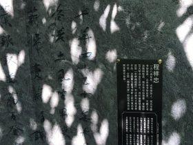 負薪行-杜甫千詩碑-浣花溪公園-成都杜甫草堂博物館-書:程祥忠