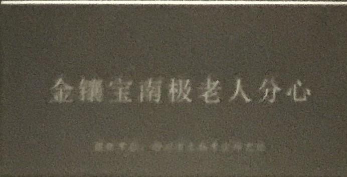 金鑲宝南极老人分心-物色-明代女子の生活芸術展-四川博物院-成都市