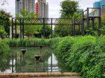 東郊記憶-成華区-成都市-撮影:王黎明