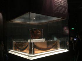 特殊保存の象牙-展示ホール3-成都金沙遺跡博物館-成都市