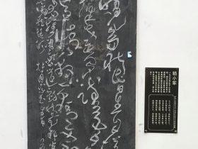 宗武生日-杜甫千詩碑-浣花溪公園-成都杜甫草堂博物館-書:嵇小軍