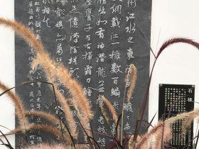觀打魚歌-杜甫千詩碑-浣花溪公園-成都杜甫草堂博物館-書:石鋒