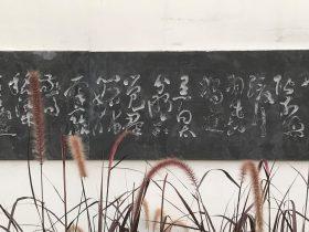 花鴨-杜甫千詩碑-浣花溪公園-成都杜甫草堂博物館-書:朱河山