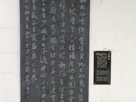 枯楠-杜甫千詩碑-浣花溪公園-成都杜甫草堂博物館-書:王雨生
