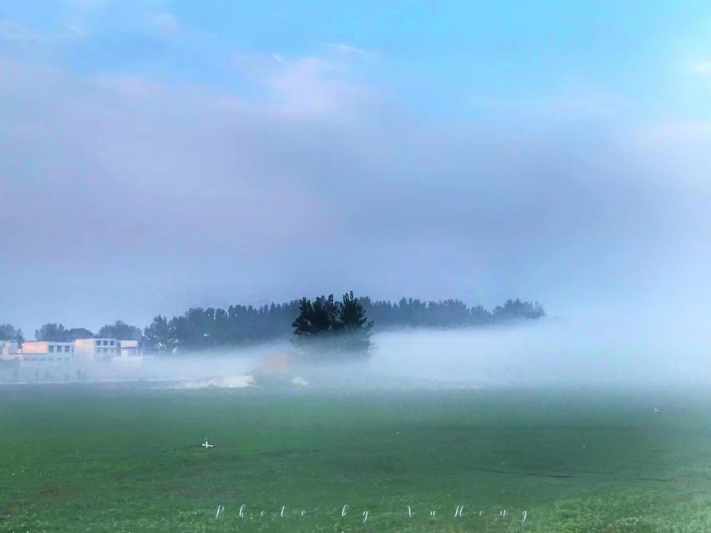 二里頭遺址-偃師県-洛陽市-河南省-撮影:許宏-美図:劉俐