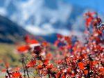 稲城亞丁風景区-日瓦郷-稲城県-カンゼ・チベット族自治州-四川