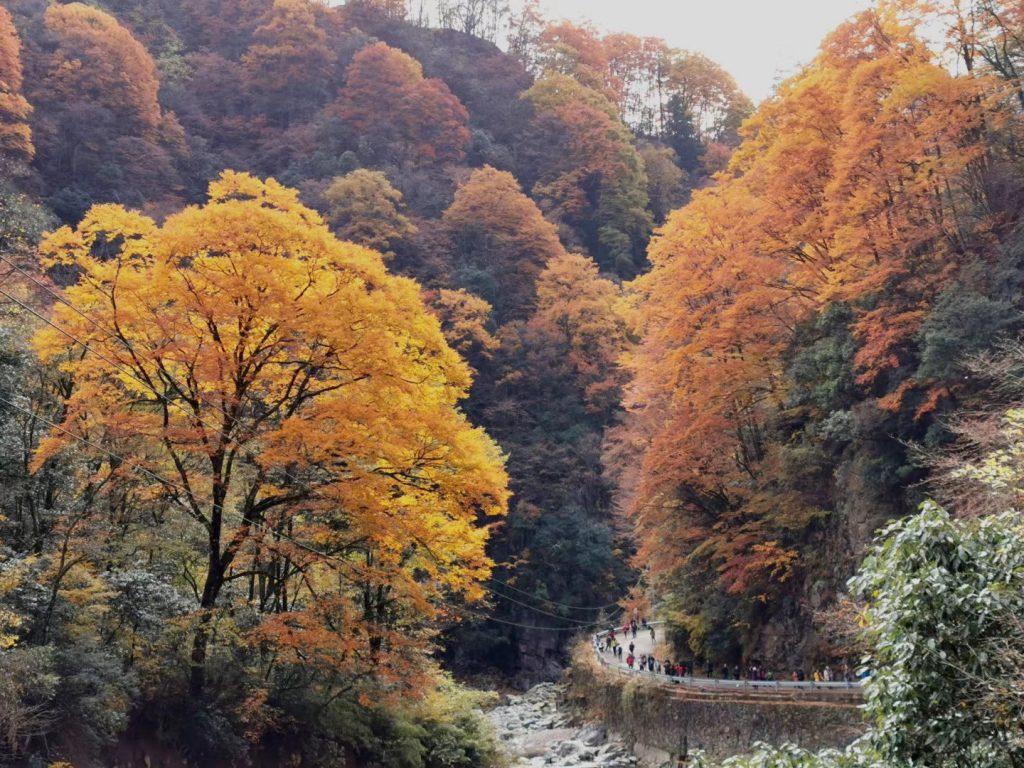 光霧山-諾水河国家地質公園-米倉山-巴中市-四川省-撮影:張萍