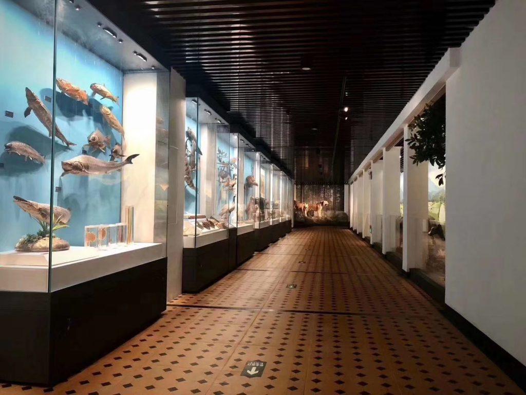 華南農業博物館-華南農業大学-広州市-広東省-撮影:戴涛