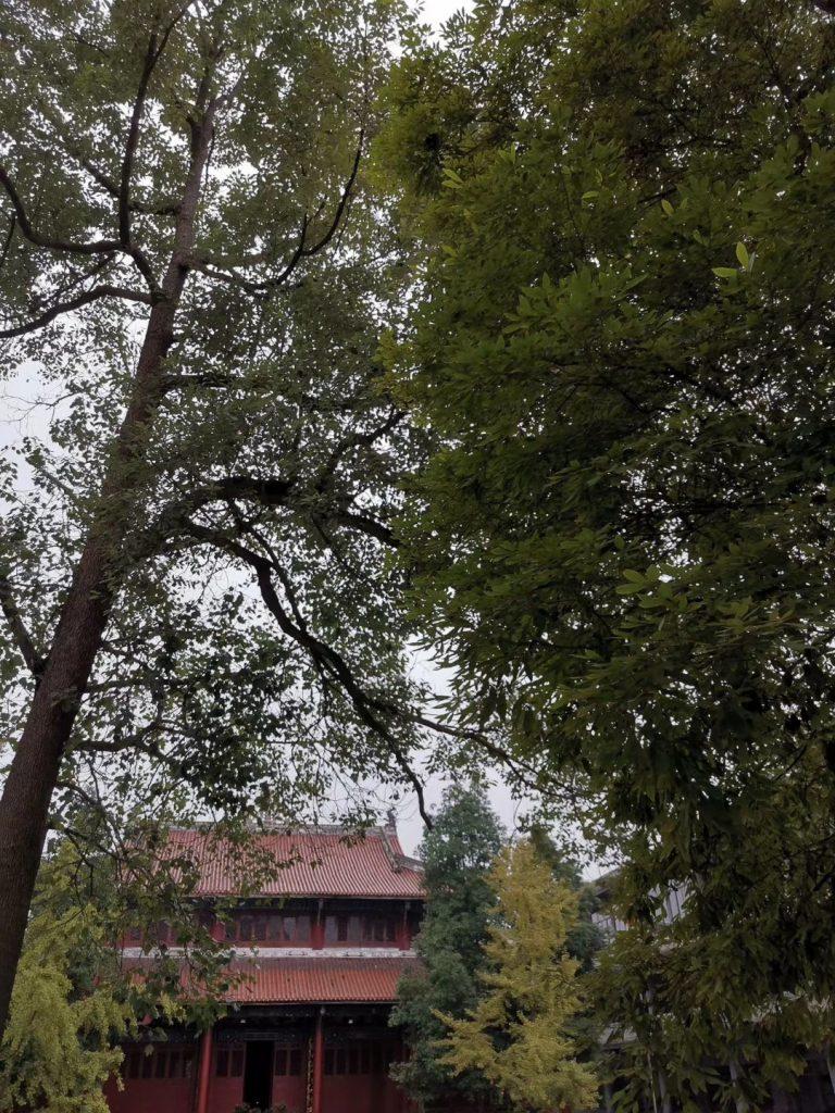 蜀州天目寺-崇州市-成都市-四川省-撮影:盧丁