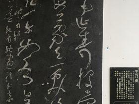 能畫-杜甫千詩碑-浣花溪公園-成都杜甫草堂博物館-書:王乃勇