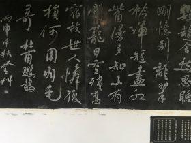 鸚鵡-杜甫千詩碑-浣花溪公園-成都杜甫草堂博物館-書:王登科