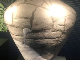 陶罐-総合館-三星堆博物館-広漢市-徳陽市-四川省