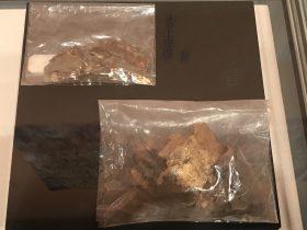 千手観音掲取の旧金箔-天下の大足-大足石刻の発見と継承-金沙遺跡博物館-成都