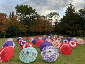 日本庭園-国営昭和記念公園-立川市-東京