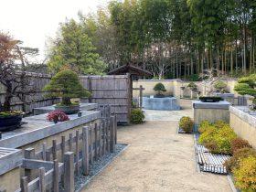 盆栽苑-日本庭園-国営昭和記念公園-立川市-東京