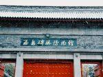 西安碑林博物館-西安市-陝西省-写真提供:郭一丹
