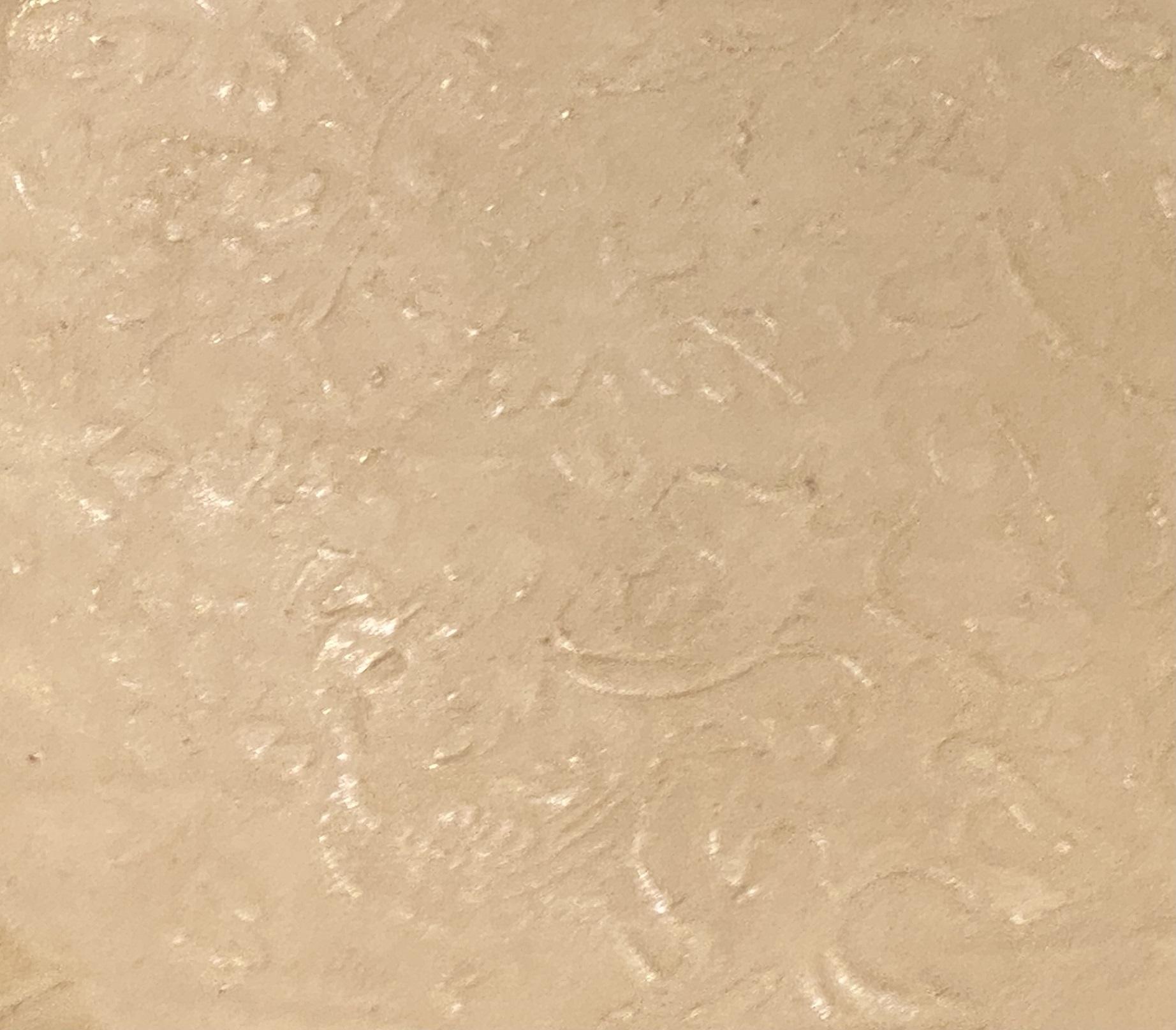 定窯白釉印花鳳凰牡丹菊瓣口盤-金時代-特別展【食味人間】四川博物院・中国国家博物館