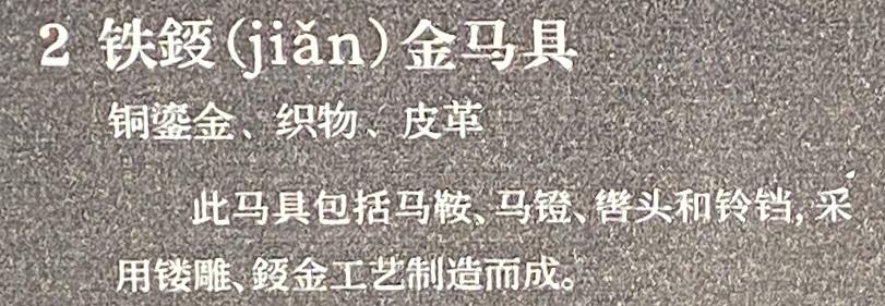 鉄鋄金馬具-特別展【七宝玲瓏-ヒマラヤからの芸術珍品】-金沙遺跡博物館-成都