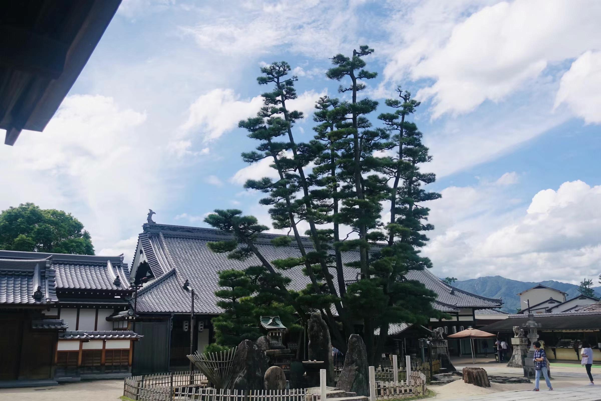 広島平和記念資料館-中島町-中区-広島市-広島県-撮影:崔麗