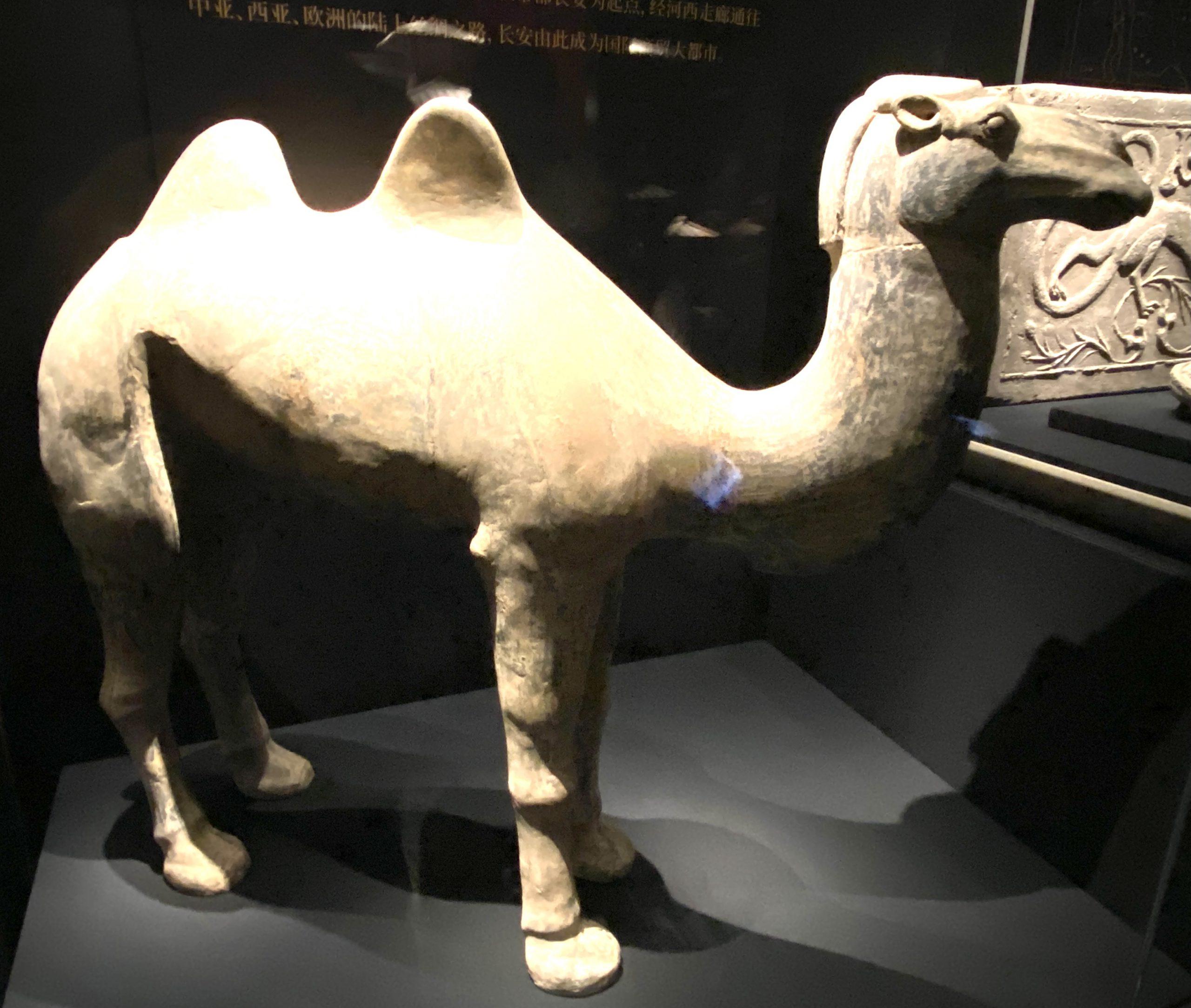 陶駱駝-【列備五都-秦漢時代の中国都市】-成都博物館-四川成都