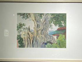 古榕樹-1957-水彩画-31×44cm-「丹青を振りかけ、詩情を送る-何継篤個人書画展」成都市美術館