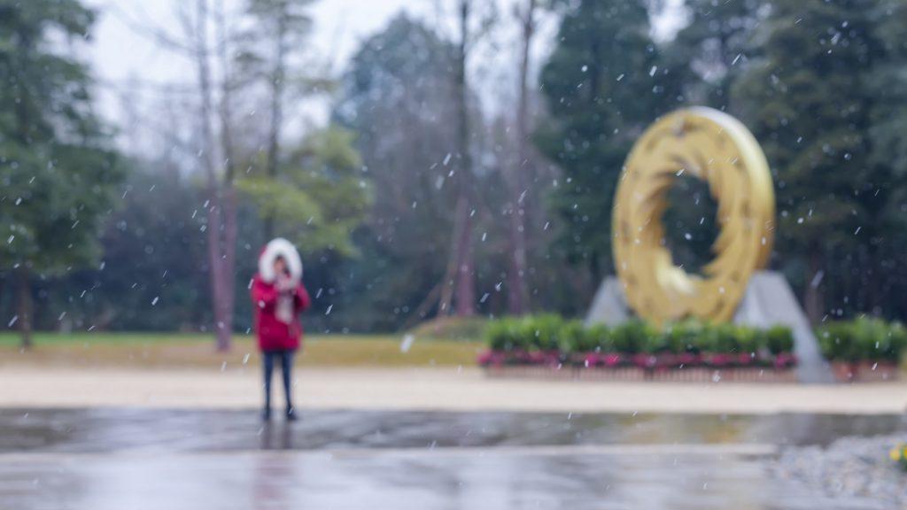 冬雪-金沙の冬:成都金沙遺跡博物館-四川成都