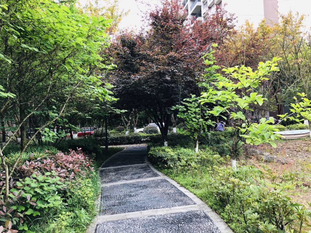 重慶大学-虎渓キャンパス