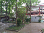 雨の中に隋唐窯址博物館-四川成都-撮影:王黎明