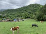 達瓦更扎-景区-宝興県雅安市-磽磧藏族郷嘎日村-四川
