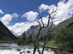 双橋溝-四姑娘山-邛崍山脈-アバ・チベット族チャン族自治州-四川