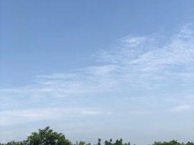 原野有機牧場-黃許鎮広平-徳陽市-四川-撮影:周潔