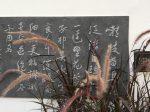 遣意二首其一-杜甫千詩碑-浣花溪公園-成都杜甫草堂博物館-書:張鉄甲