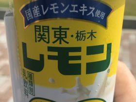 関東・栃木レモン-乳飲料-紅葉を走るわたらせ渓谷トロッコと富弘美術館-はとバスの旅