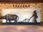 華南農業博物館-華南農業大学-広州市-広東省-写真提供:力天文創集团