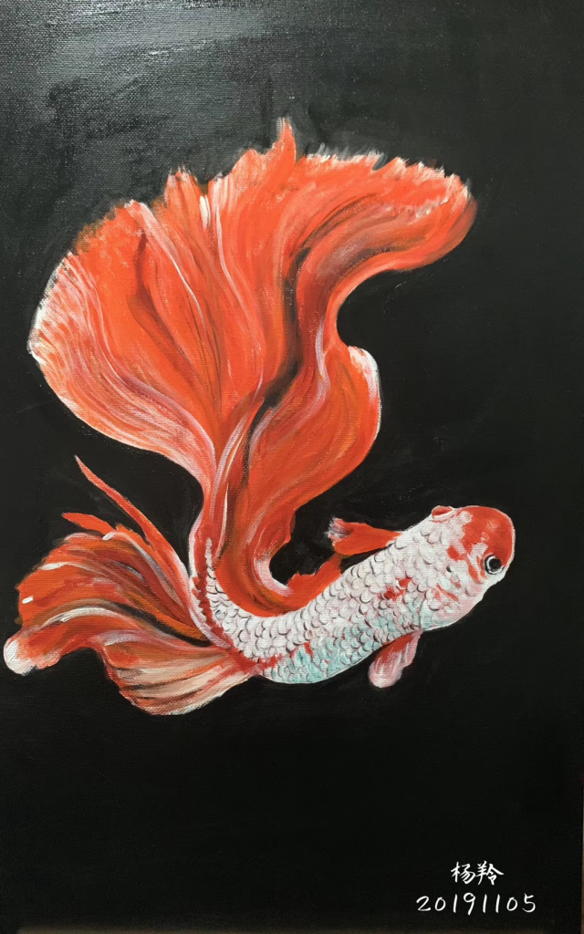 暗黒中の魚-画:楊羚