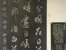 歷歷-杜甫千詩碑-浣花溪公園-成都杜甫草堂博物館-書:王軍軒