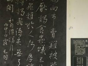 縛雞行-杜甫千詩碑-浣花溪公園-成都杜甫草堂博物館-書:毛羽